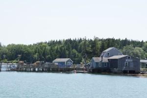 Hummer fiskeri i Maine