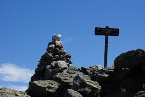 Toppen af Mount Washington