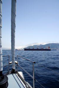 Slalom sejlads imellem fragtskibe