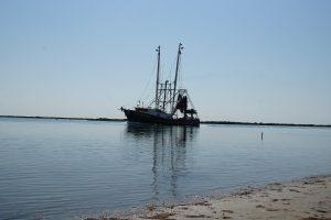 En rejefisker på vej i havn
