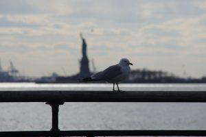 Udsigten fra Battery Park